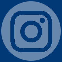 mentor college instagram icon